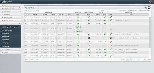 CDR management server - File scan details